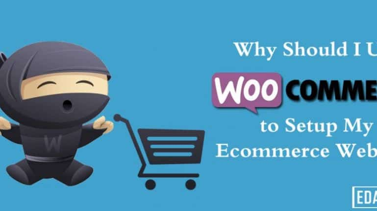 Why Should I Use WooCommerce to Setup My eCommerce Website?