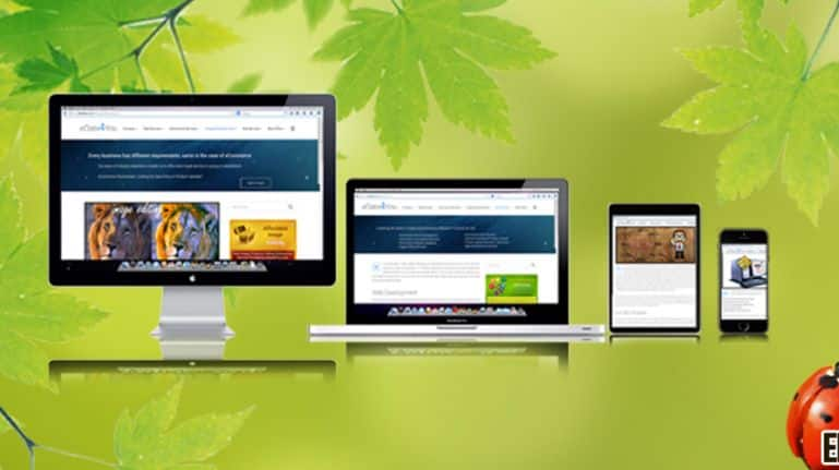 Ways to Make your Website Look Great on a Smartphone